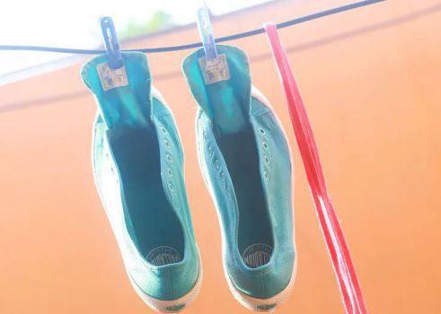 نحوه شستن کفش اسکیچرز